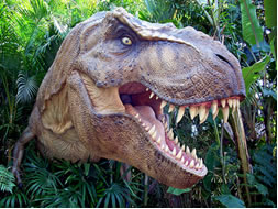 dinosauri-a-miragica