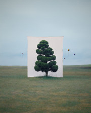 Myoung-ho Lee, Tree 2, 2007LOW