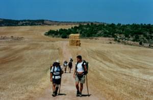 pellegrini su cammino