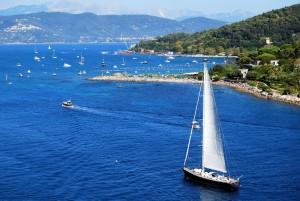 sailing-boat-943667_1920