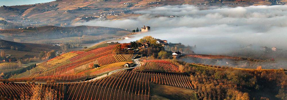 Langhe una regione storica del Piemonte