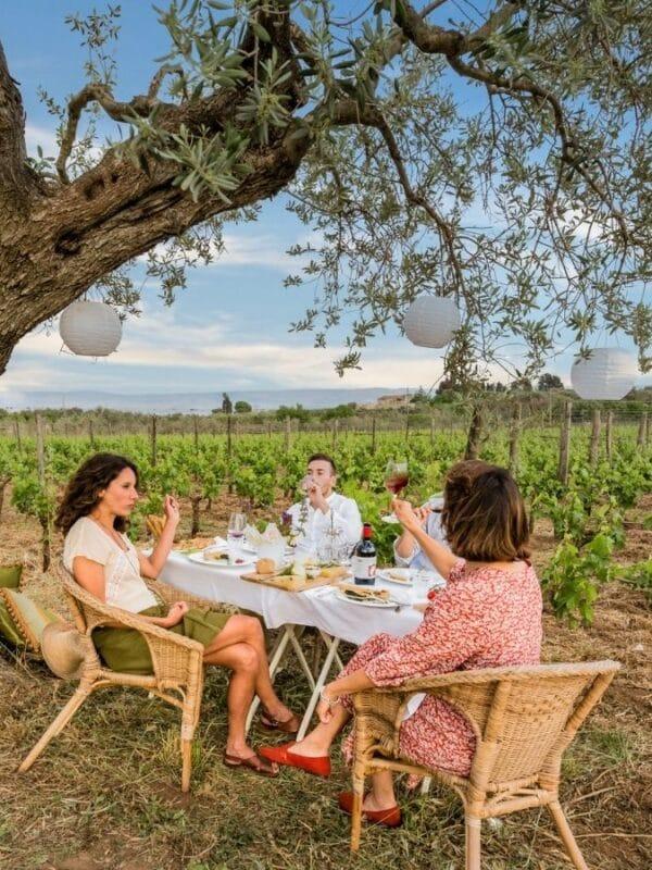Vacanze in vigna: 6 esperienze da provare in Italia